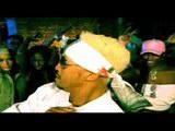 music video : Million Dan - Dogz 'n' Sledgez