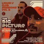 Artificial Intelligence - Liquid V Club Sessions Vol 2 - The Big Picture (Liquid V LQDCD002, 2006) : посмотреть обложки диска