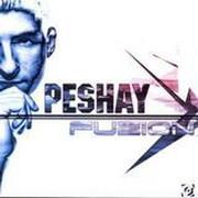 Peshay - Fuzion (Cubik Music Productions CUBIKCD001, 2002)