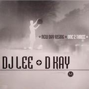 D Kay & DJ Lee - One 2 Three / New Day Rising (Metro Recordings MTRR012, 2004) : посмотреть обложки диска