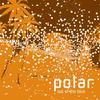 Polar - Out Of The Blue (Certificate 18 CERT18CD016, 2002, CD)