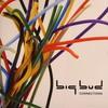 Big Bud - Connections (Sound Trax FILMCD004, 2009, CD)