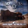 Terravita - Beantown Boogaloo / Adult Robot Kung Fu (VIP) (Technique Recordings TECH053, 2008, vinyl 12'')