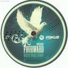 various artists - White Noise Down / Jewel (Fokuz Recordings FOKUZ038, 2010, vinyl 12'')