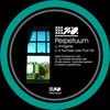 Perpetuum - Imagine / A Number Less Than Six (Translation Recordings TRNSLDIGI004, 2009, file)