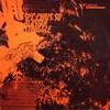 SKC & Chris SU - Blastah / Struggle (DSCI4 DSCI4013, 2004, vinyl 12'')