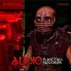 Audio - Planet Fall / Pandorum (Virus Recordings VRS022, 2009, vinyl 12'')