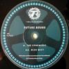 Futurebound - The Ephemeris / Blue Mist (Timeless Recordings DJ023, 1996, vinyl 12'')