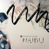 Naibu - Naibu (Horizons Music HZNCD004, 2010, CD)
