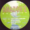 Amazon II - Beat Booyaa! / This Lovely Feeling (Remixes) (Aphrodite Recordings APH013, 1994, vinyl 12'')