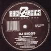 DJ Biggs - Sunrize / The Hunter (Back 2 Basics B2B12028, 1995, vinyl 12'')