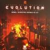 various artists - Shogun Evolution EP Series Two (Shogun Audio SHA044, 2011, vinyl 2x12'')