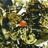 Neotropic - Mr. Brubaker's Strawberry Alarm Clock (NTone NTONECD30, 1998, CD)