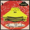 Homelife - Flying Wonders (Ninja Tune ZENCD071, 2002, CD)