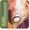 Blu Rum 13 - Vaguely Familiar (Jazz Fudge JFR032CD, 2001, CD)