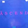 DJ Ascend - 1, 2, 3 / New Style (Remixes) (Second Movement SMR27, 1997, vinyl 12'')
